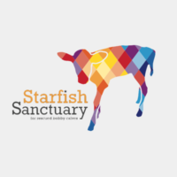 Starfish Bobby Calf Project Thumbnail